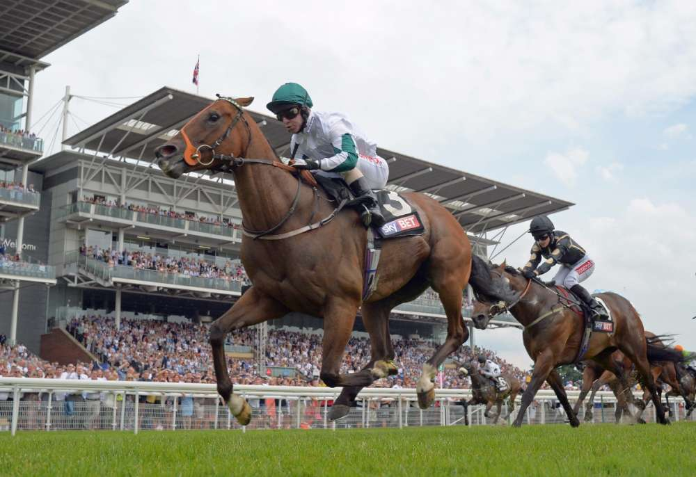 Kimberella tanks his way to Sky Bet Dash win