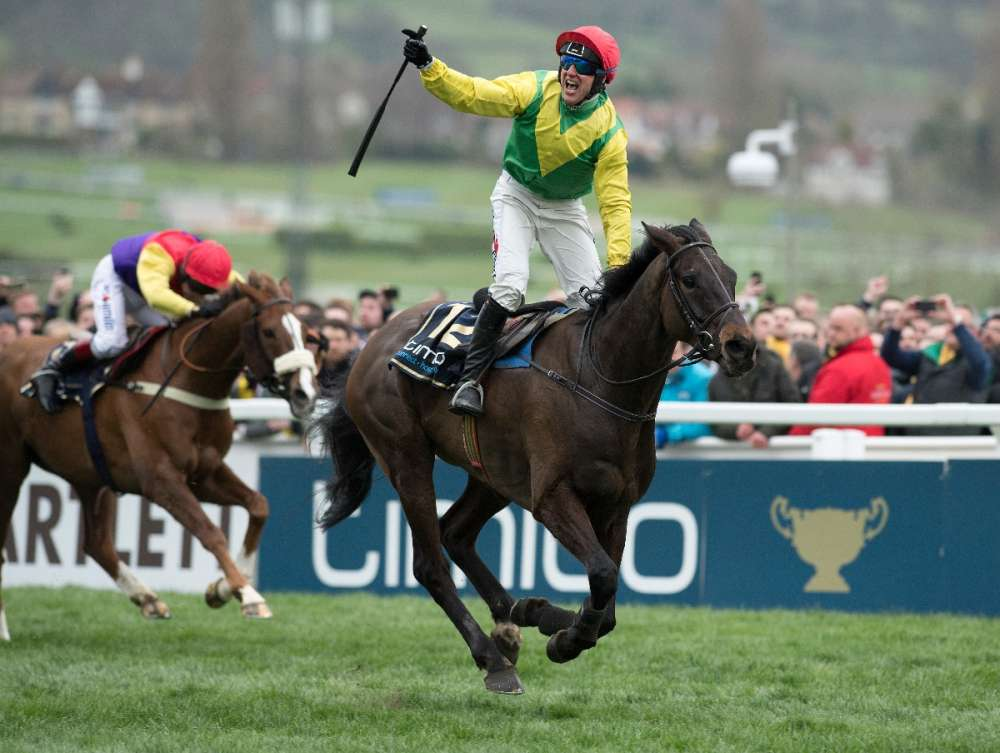 Sizing John success in the Cheltenham Gold Cup