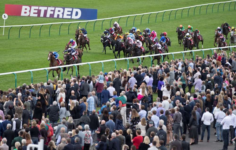 Cesarewitch smash up!